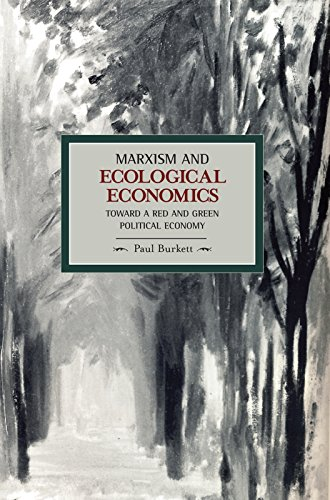 9781608460250: Marxism and Ecological Economics: Toward a Red and Green Political Economy (Historical Materialism)