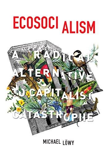 9781608464715: Ecosocialism: A Radical Alternative to Capitalist Catastrophe