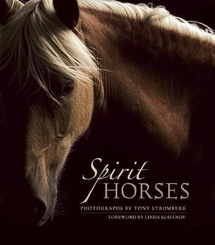 9781608681426: Spirit Horses