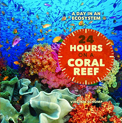 9781608708925: 24 Hours on a Coral Reef (Day in an Ecosystem)