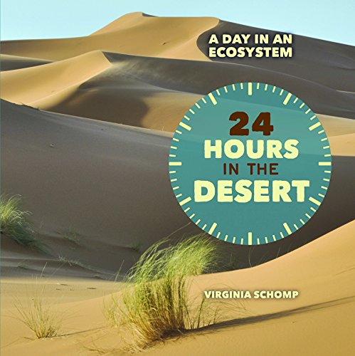 9781608708932: 24 Hours in the Desert (Day in an Ecosystem)