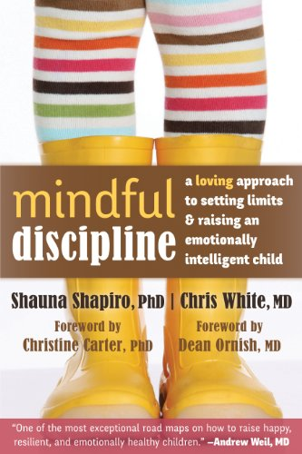 9781608828845: Mindful Discipline: A Loving Approach to Setting Limits and Raising an Emotionally Intelligent Child