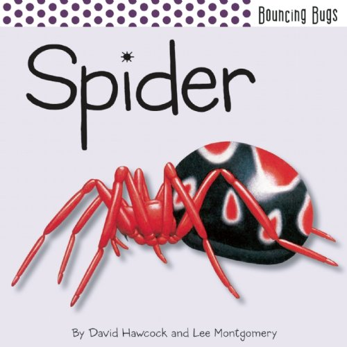 9781608871896: Spider (Bouncing Bugs)