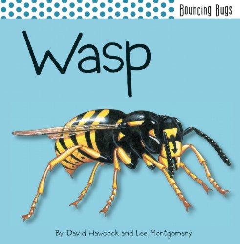 9781608872152: Wasp (Bouncing Bugs)