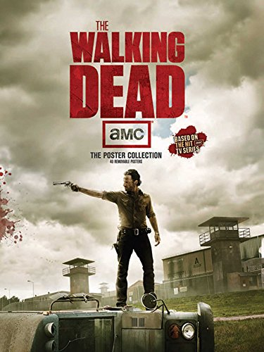 9781608872251: WALKING DEAD (Insights Poster Collections)