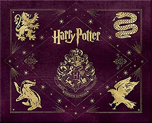 9781608876860: Harry Potter: Hogwarts Deluxe Stationery Set (Insights Deluxe Stationery Sets)