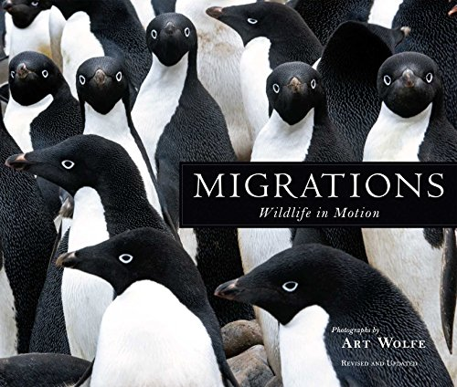 9781608877140: Migrations: Wildlife in Motion