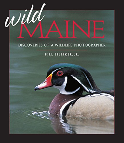 Wild Maine: Discoveries of a Wildlife Photographer: Silliker, Bill, Jr.