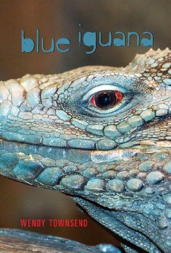 Blue Iguana: Townsend, Wendy