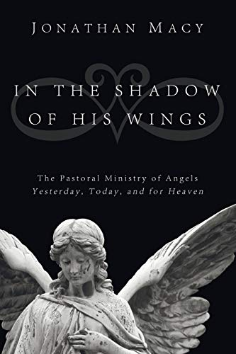 9781608998371: In the Shadow of His Wings: The Pastoral Ministry of Angels: Yesterday, Today, and for Heaven