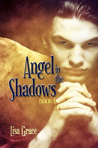 9781609110017: Angel in the Shadows Book One