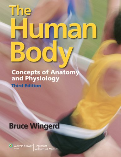 The Human Body: Concepts of Anatomy and: Wingerd M.S., Mr.