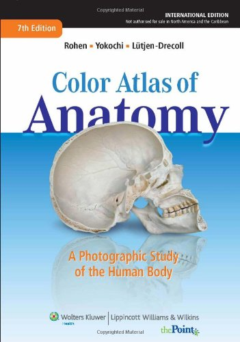 9781609137854: Color Atlas of Anatomy: A Photographic Study of the Human Body