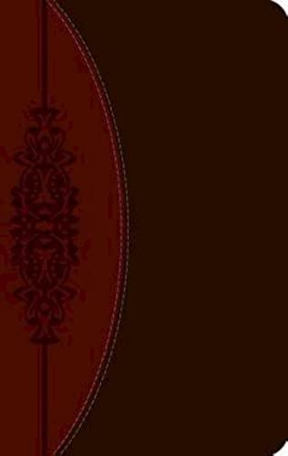 Wesley Study Bible-Ceb (Imitation Leather): Joel B.