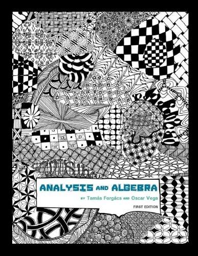 9781609277567: Real Analysis and Algebra
