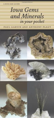 9781609380854: Iowa Gems and Minerals in Your Pocket (Bur Oak Guide)