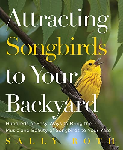 9781609617547: Attracting Songbirds to Your Backyard