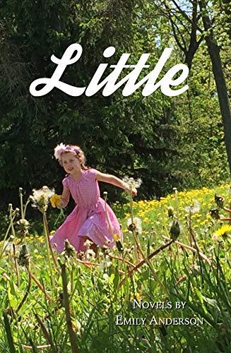 9781609641320: Little: Novels