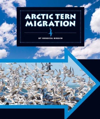 9781609736163: Arctic Tern Migration (Animal Migrations)