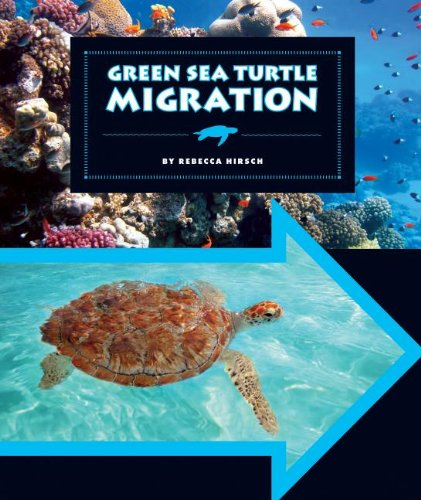 9781609736217: Green Sea Turtle Migration (Animal Migrations)