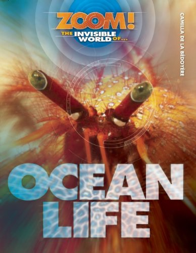 9781609920432: The Invisible World of Ocean Life (Zoom!)