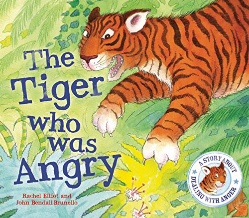 9781609922573: The Tiger Who Was Angry (When I Was. . .)