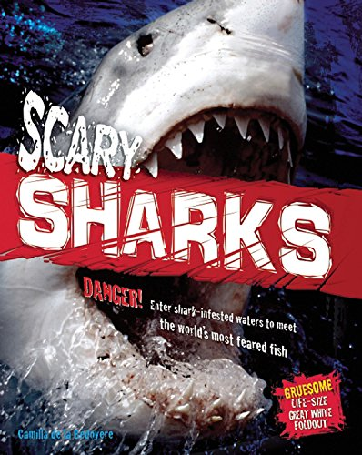 9781609922801: Scary Sharks (Animal Attack!)