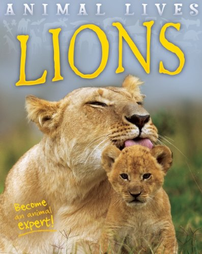 Lions (Animal Lives): MORGAN, SALLY