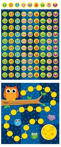 9781609964146: Owls Mini Incentive Charts