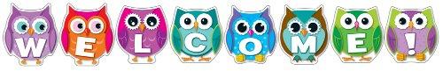 9781609968373: Colorful Owl Welcome Bulletin Board Set