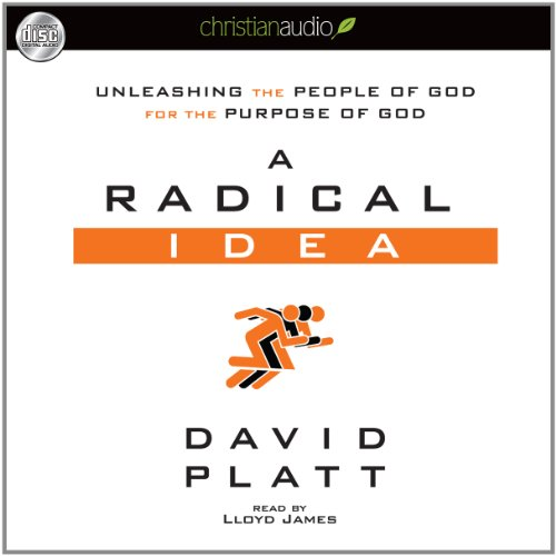 9781610453936: A Radical Idea: Unleashing the People of God for the Purpose of God
