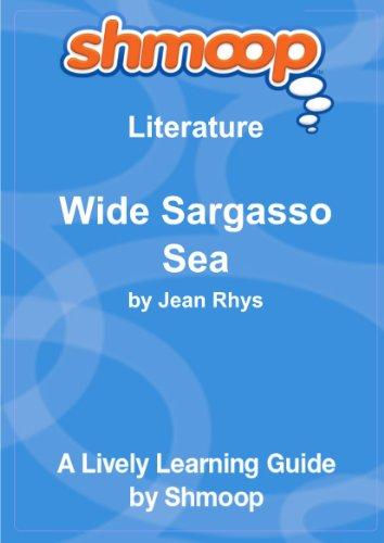 9781610623087: Wide Sargasso Sea: Shmoop Literature Guide