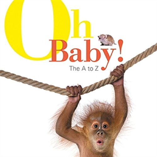 9781610671484: Oh Baby!: The A to Z