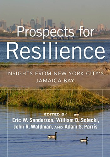 9781610917322: Prospects for Resilience: Insights from New York City's Jamaica Bay