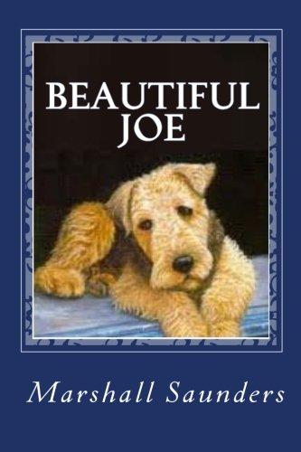 9781611044409: Beautiful Joe