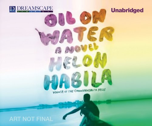 9781611201222: Oil on Water: A Novel