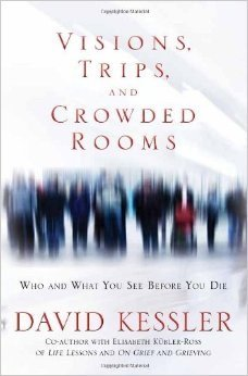 9781611290677: Visions, Trips, and Crowded Rooms: Who and What You See Before You Die
