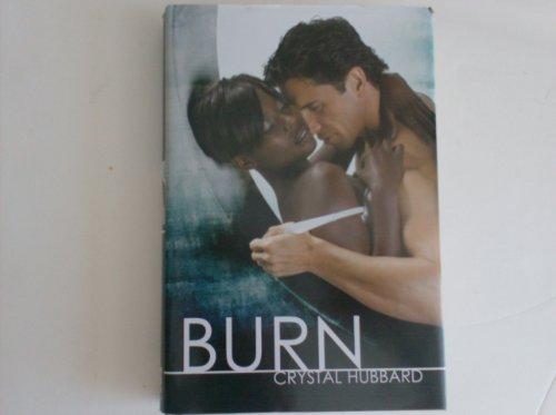9781611291230: Burn