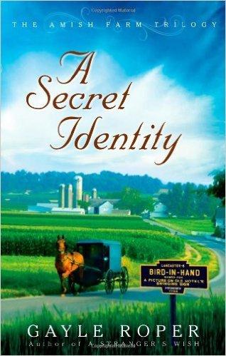 9781611292992: A Secret Identity