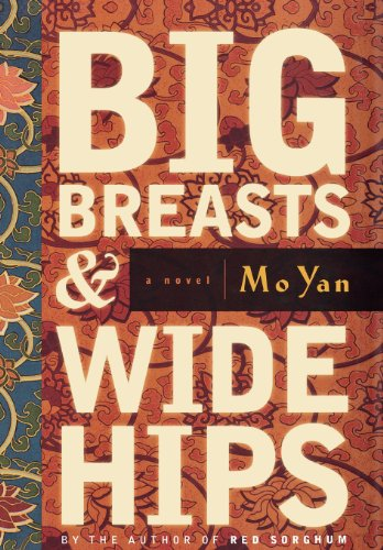 9781611453706: Big Breasts & Wide Hips: A Novel
