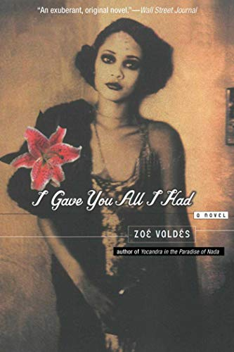 9781611459326: I Gave You All I Had: A Novel