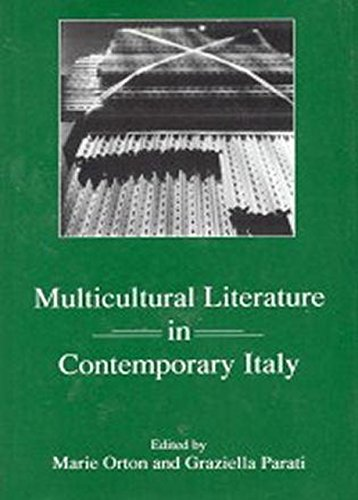 Multicultural Literature in Contemporary Italy (Hardback)