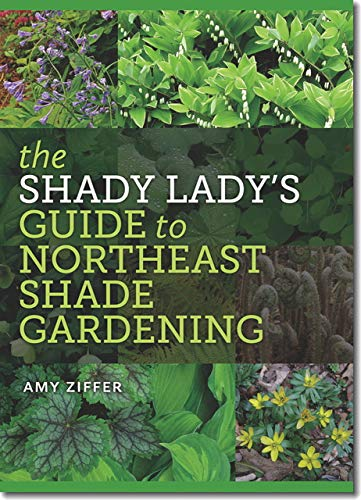 9781611685251: The Shady Lady's Guide to Northeast Shade Gardening