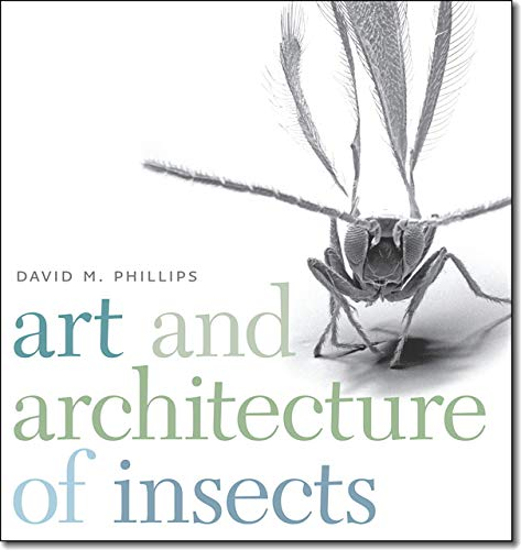 9781611685329: Art and Architecture of Insects