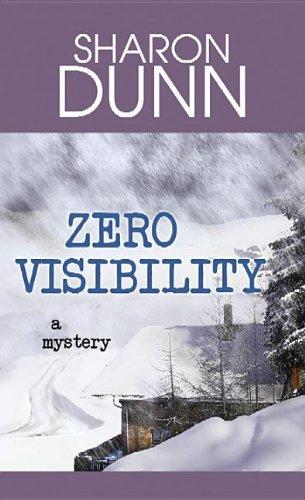 9781611736366: Zero Visibility
