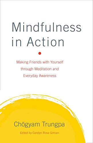 9781611800203: Mindfulness in Action: Making Friends with Yourself through Meditation and Everyday Awareness
