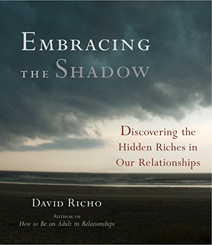 9781611800470: Embracing the Shadow: Discovering the Hidden Riches in Our Relationships