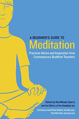 A Beginner`s Guide to Meditation: Practical Advice and Inspiration from Contemporary Buddhist ...