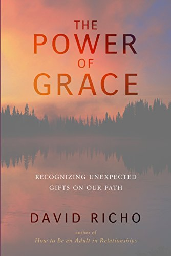 9781611801460: The Power of Grace: Recognizing Unexpected Gifts on Our Path