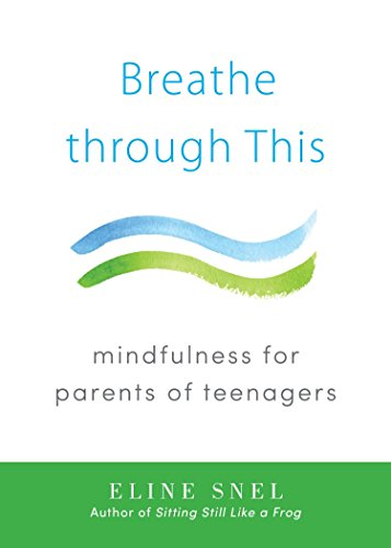 9781611802467: Breathe through This: Mindfulness for Parents of Teenagers